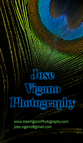 Jose Vigano Photography