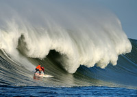 Maverick's Surf 2009-2010